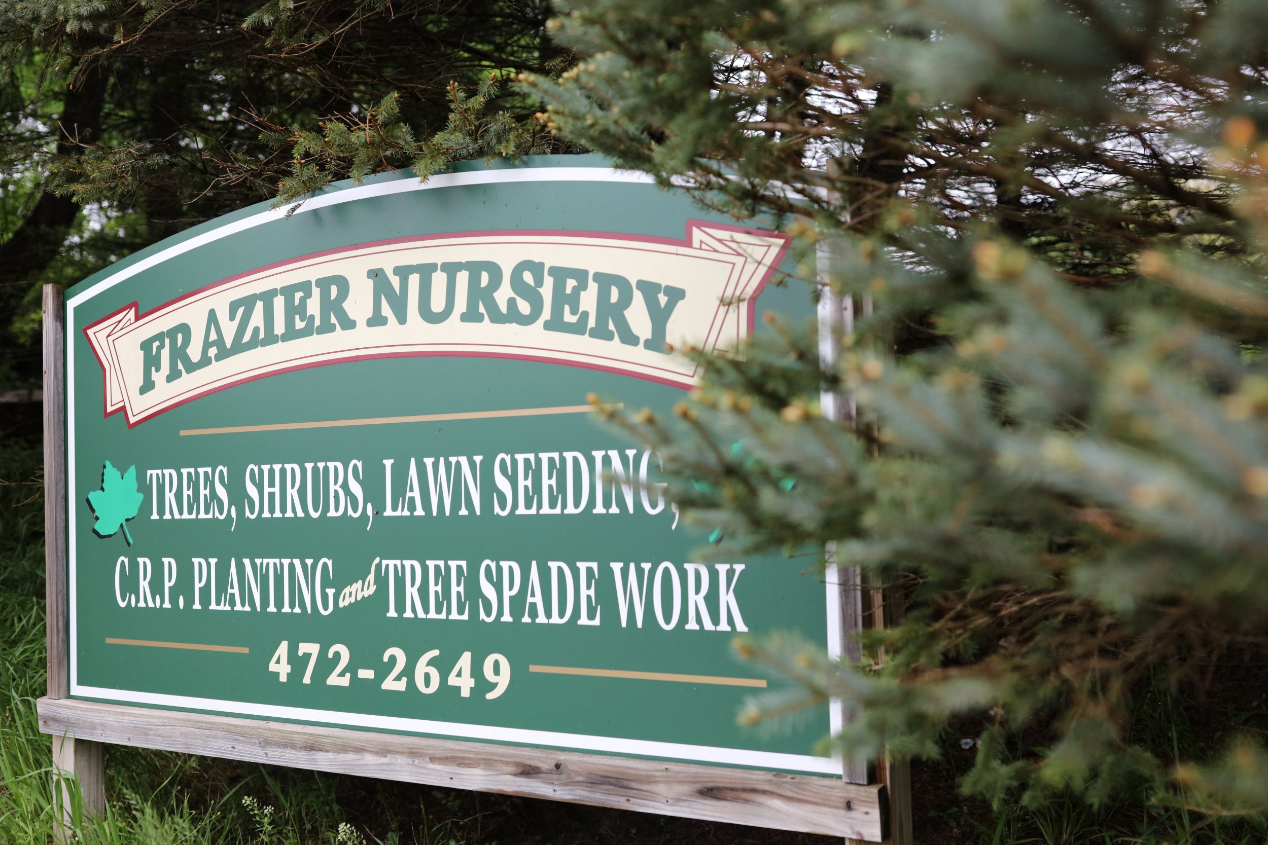 Frazier Nursery sign